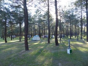 parcelas-camping-calonge-segovia (1)