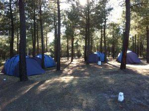 parcelas-camping-calonge-segovia (11)