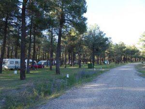 parcelas-camping-calonge-segovia (5)