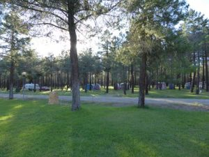 parcelas-camping-calonge-segovia (6)