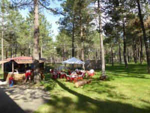 piscinas-camping-calonge-segovia (1)