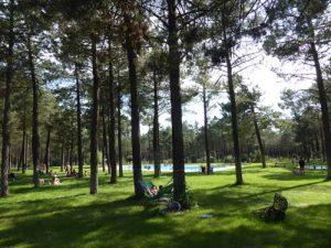 piscinas-camping-calonge-segovia (9)